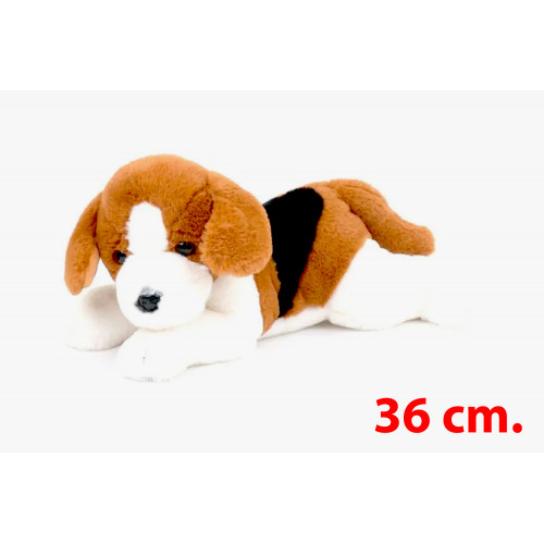 Cane Beagle Steso 36cm