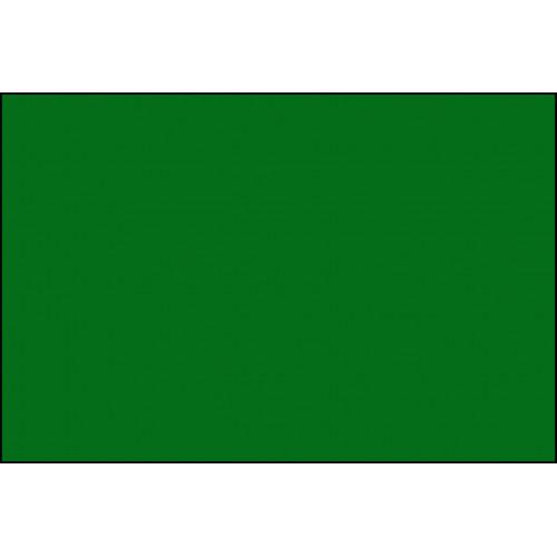 Fogli Elle Erre Verde 70x100 cm 10 pezzi